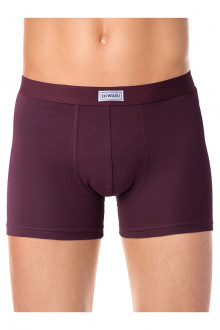 Conte Elegant DIWARI_basic_shorts_700 bordo