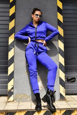 Брюки Rawwwr clothing ВТ004 синий