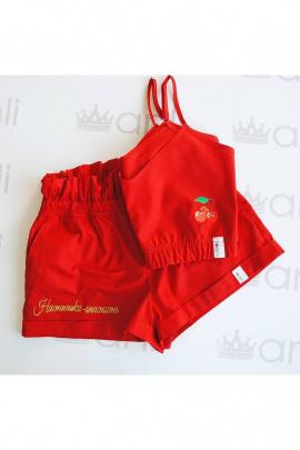 Комплект Anli 002+008а красный