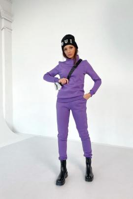 Брюки Rawwwr clothing 001-начес фиолетовый