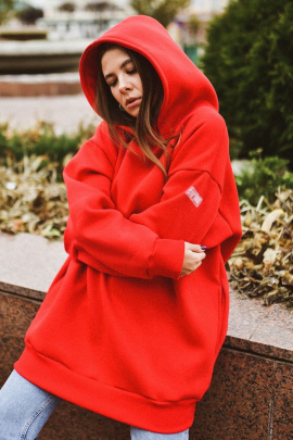 Худи Rawwwr clothing 083-начес красный
