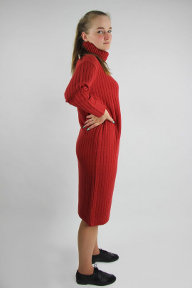 Платье Полесье С4767-21 1С1059-Д43 164 красный_минерал