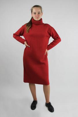 Платье Полесье С4767-21 1С1059-Д43 170 красный_минерал