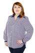 Блуза Левлада 150 красный,серый