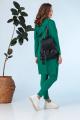 Спортивный костюм Anastasia 667.1