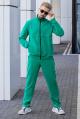 Спортивный костюм GO M3005/23-02.176-182